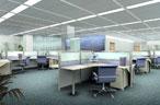 集体办公室装修案例